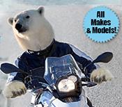 Bob's Polar Bear Challenge
