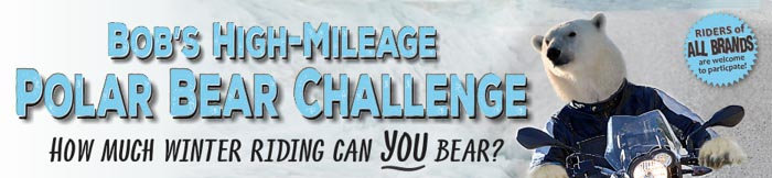Polar Bear Challenge